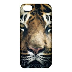 Tiger Bengal Stripes Eyes Close Apple Iphone 5c Hardshell Case by BangZart