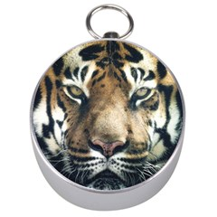 Tiger Bengal Stripes Eyes Close Silver Compasses