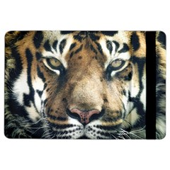 Tiger Bengal Stripes Eyes Close Ipad Air 2 Flip