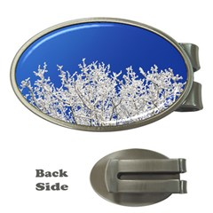 Crown Aesthetic Branches Hoarfrost Money Clips (oval)