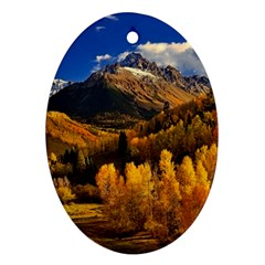 Colorado Fall Autumn Colorful Ornament (oval) by BangZart