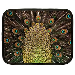 Peacock Feathers Wheel Plumage Netbook Case (xxl)