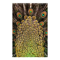 Peacock Feathers Wheel Plumage Shower Curtain 48  X 72  (small)  by BangZart