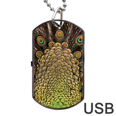 Peacock Feathers Wheel Plumage Dog Tag Usb Flash (one Side)