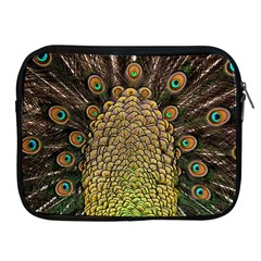 Peacock Feathers Wheel Plumage Apple Ipad 2/3/4 Zipper Cases by BangZart