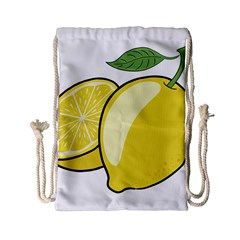 Lemon Fruit Green Yellow Citrus Drawstring Bag (small) by BangZart