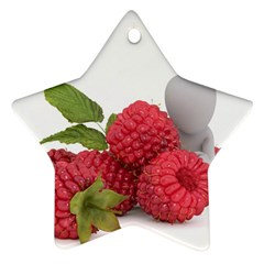 Fruit Healthy Vitamin Vegan Star Ornament (Two Sides)