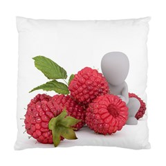 Fruit Healthy Vitamin Vegan Standard Cushion Case (Two Sides)