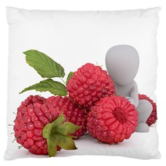 Fruit Healthy Vitamin Vegan Large Cushion Case (Two Sides)