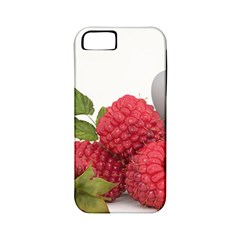 Fruit Healthy Vitamin Vegan Apple iPhone 5 Classic Hardshell Case (PC+Silicone)