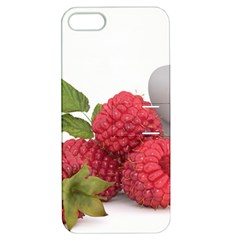 Fruit Healthy Vitamin Vegan Apple iPhone 5 Hardshell Case with Stand