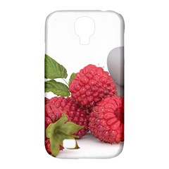 Fruit Healthy Vitamin Vegan Samsung Galaxy S4 Classic Hardshell Case (PC+Silicone)