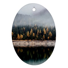Trees Plants Nature Forests Lake Oval Ornament (two Sides) by BangZart