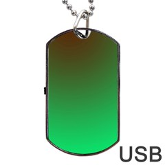 Course Colorful Pattern Abstract Dog Tag Usb Flash (two Sides)