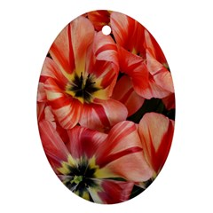 Tulips Flowers Spring Oval Ornament (two Sides) by BangZart