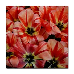 Tulips Flowers Spring Face Towel by BangZart