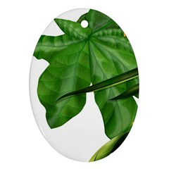 Plant Berry Leaves Green Flower Oval Ornament (two Sides)