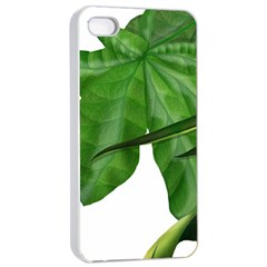 Plant Berry Leaves Green Flower Apple Iphone 4/4s Seamless Case (white)