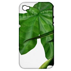 Plant Berry Leaves Green Flower Apple Iphone 4/4s Hardshell Case (pc+silicone)