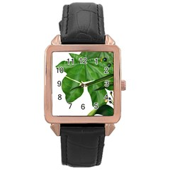 Plant Berry Leaves Green Flower Rose Gold Leather Watch  by BangZart