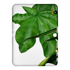 Plant Berry Leaves Green Flower Samsung Galaxy Tab 4 (10 1 ) Hardshell Case