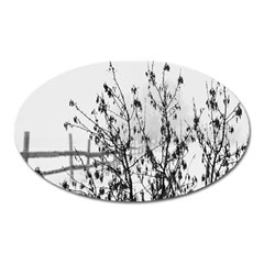 Snow Winter Cold Landscape Fence Oval Magnet by BangZart