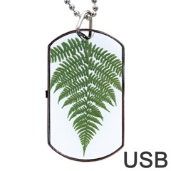 Boating Nature Green Autumn Dog Tag Usb Flash (two Sides) by BangZart