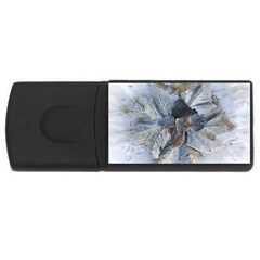 Winter Frost Ice Sheet Leaves Rectangular Usb Flash Drive