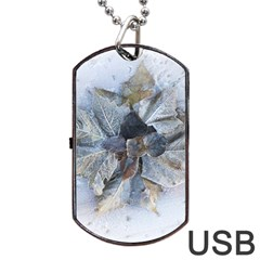 Winter Frost Ice Sheet Leaves Dog Tag Usb Flash (two Sides) by BangZart