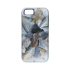 Winter Frost Ice Sheet Leaves Apple Iphone 5 Classic Hardshell Case (pc+silicone)