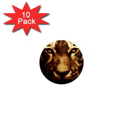 Cat Tiger Animal Wildlife Wild 1  Mini Magnet (10 Pack)  by Celenk