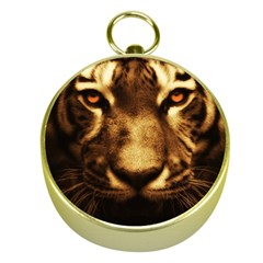 Cat Tiger Animal Wildlife Wild Gold Compasses by Celenk
