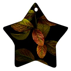 Autumn Leaves Foliage Ornament (star) by Celenk