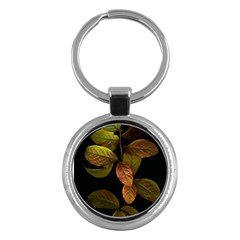 Autumn Leaves Foliage Key Chains (round)  by Celenk