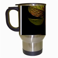 Autumn Leaves Foliage Travel Mugs (white)