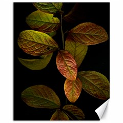 Autumn Leaves Foliage Canvas 11  X 14   by Celenk