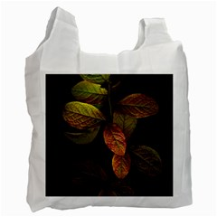Autumn Leaves Foliage Recycle Bag (one Side) by Celenk
