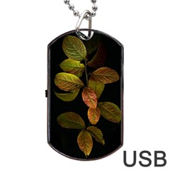 Autumn Leaves Foliage Dog Tag Usb Flash (two Sides) by Celenk