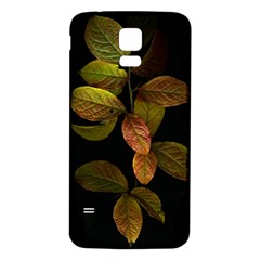 Autumn Leaves Foliage Samsung Galaxy S5 Back Case (white) by Celenk