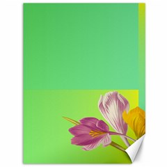 Background Homepage Blossom Bloom Canvas 36  X 48   by Celenk