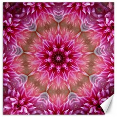 Flower Mandala Art Pink Abstract Canvas 12  X 12   by Celenk