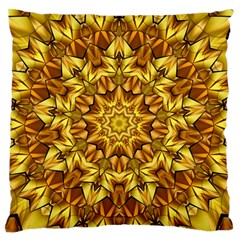 Abstract Antique Art Background Large Flano Cushion Case (two Sides) by Celenk