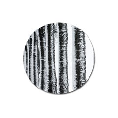 Row Trees Nature Birch Magnet 3  (round)