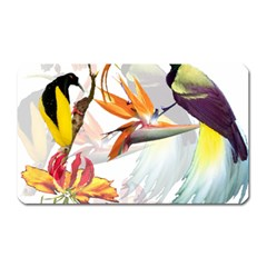 Birds Of Paradise Magnet (rectangular) by TKKdesignsCo