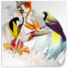 Birds Of Paradise Canvas 12  X 12   by TKKdesignsCo