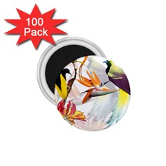 Exotic Birds Of Paradise And Flowers Watercolor 1 75  Magnets (100 Pack)  by TKKdesignsCo