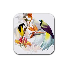 Exotic Birds Of Paradise And Flowers Watercolor Rubber Square Coaster (4 Pack)  by TKKdesignsCo