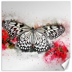 Butterfly Animal Insect Art Canvas 20  X 20
