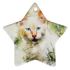 Cat Animal Art Abstract Watercolor Star Ornament (two Sides) by Celenk