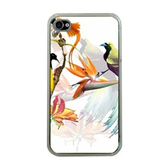 Exotic Birds Of Paradise And Flowers Watercolor Apple Iphone 4 Case (clear) by TKKdesignsCo